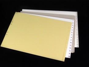 Liggande A3 kartongregister med olika typer av siffer-, bokstavsindelningar, samt otryckta flikar. Triohålning.